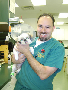 vet with puppy